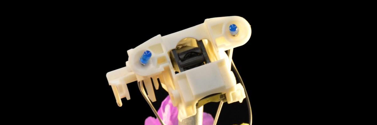Titelbild zu Strom - Eine Robotergeschichte